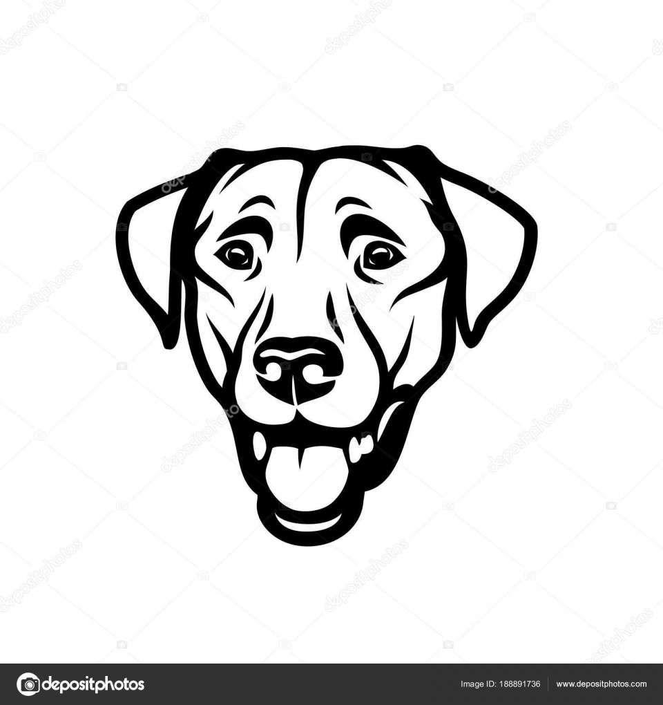 15 Labrador Outline Drawing Dog Line Art Labrador Retriever Art Outline Drawings