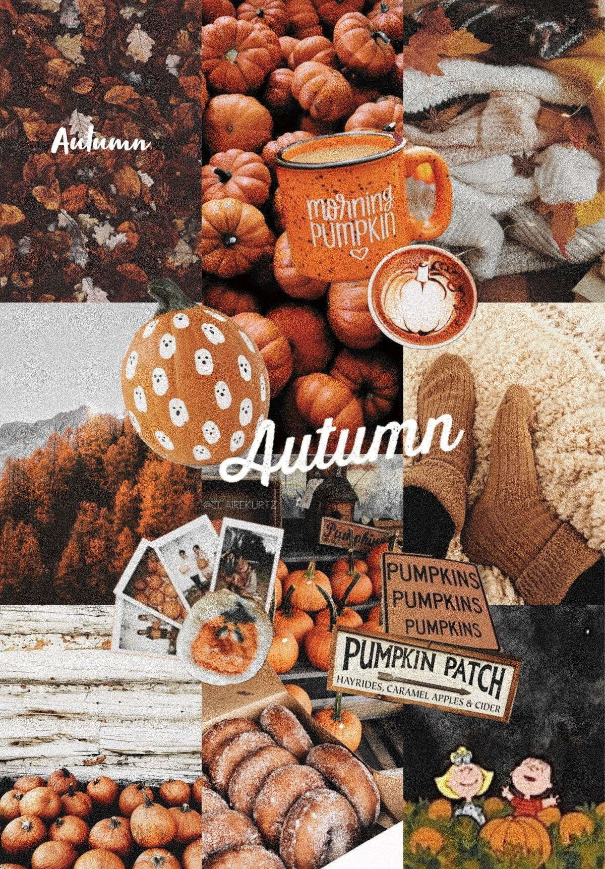 Autumn Fall Aesthetic Vsco Collage Iphone Wallpaper Aesthetic Autumn Collage Fall Ipho Iphone Wallpaper Fall Cute Fall Wallpaper Pumpkin Wallpaper