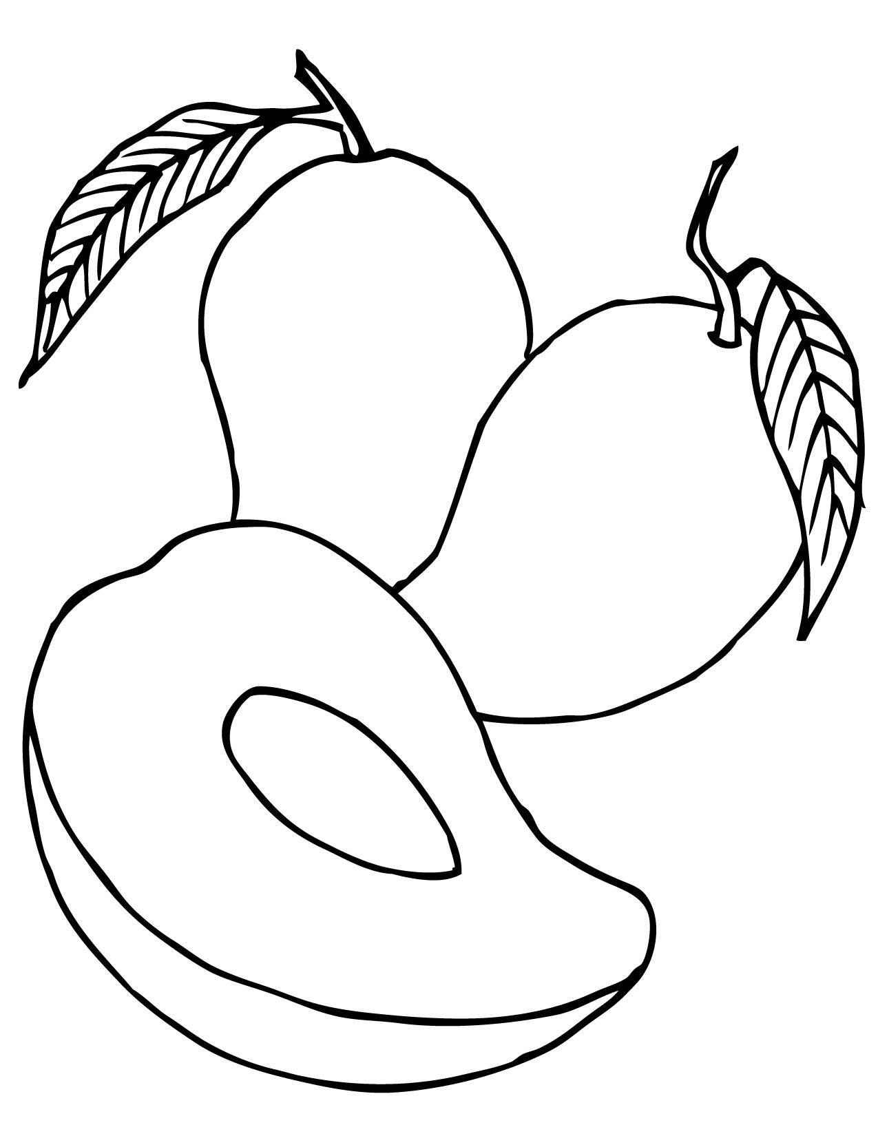 Black And White Fruit Clipart