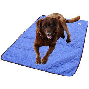Pets Cool Dog Beds Dog Cooling Mat Dog Pads