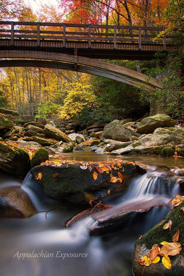 from Boone Fork Trail Appalachian Exposures Blue ridge