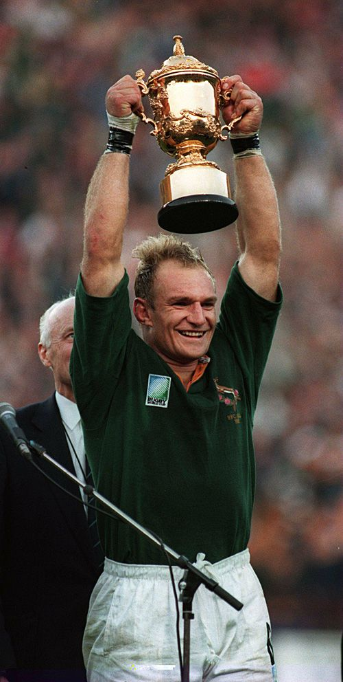 Francois Pienaar Wikipedia The Free Encyclopedia South Africa Rugby Rugby Union Springbok Rugby