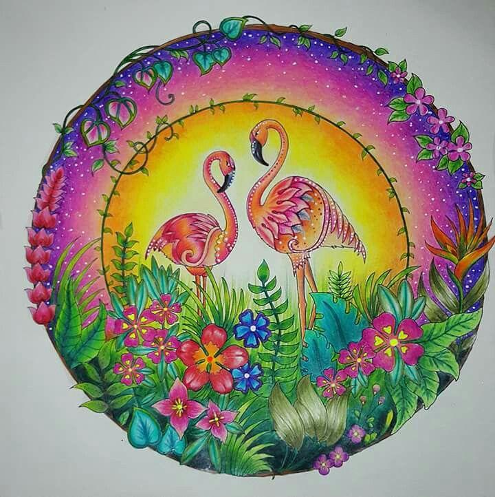 Joanna Basford Adult Coloring Books Flamingos Jungles Color Inspiration Johanna Book Craft Lemur