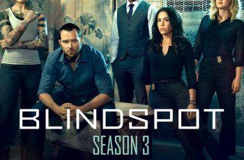 Blindspot Season 3 S03 E11 Srt English Subtitles Download Tv