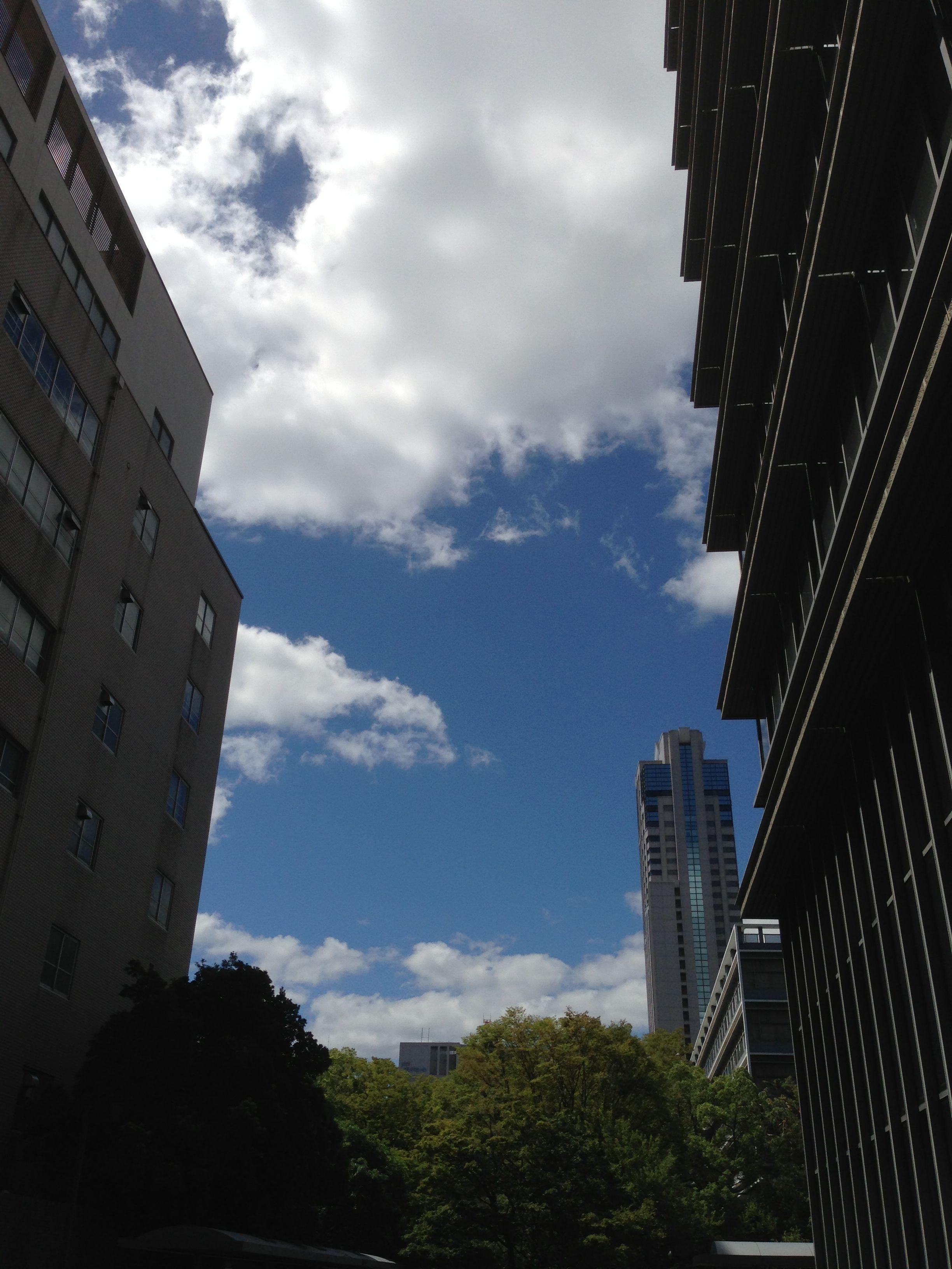 県庁東館から西方面を望む。
