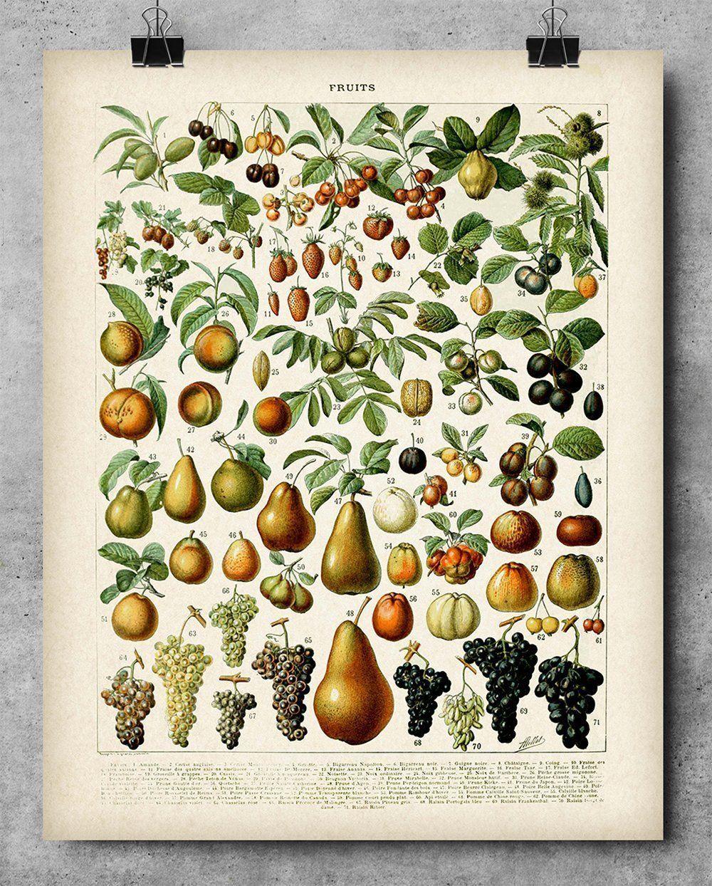 Great Home Decor 1794 Italy Map Art Print 11x14 Unframed Art Print