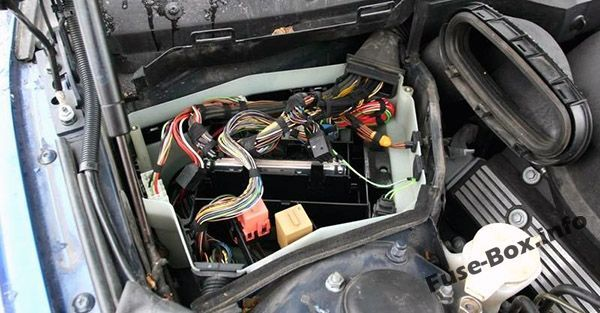 10 Bmw 5 Series E39 1996 2003 Fuses And Relays Ideas Fuse Box Bmw 5 Series Electrical Fuse