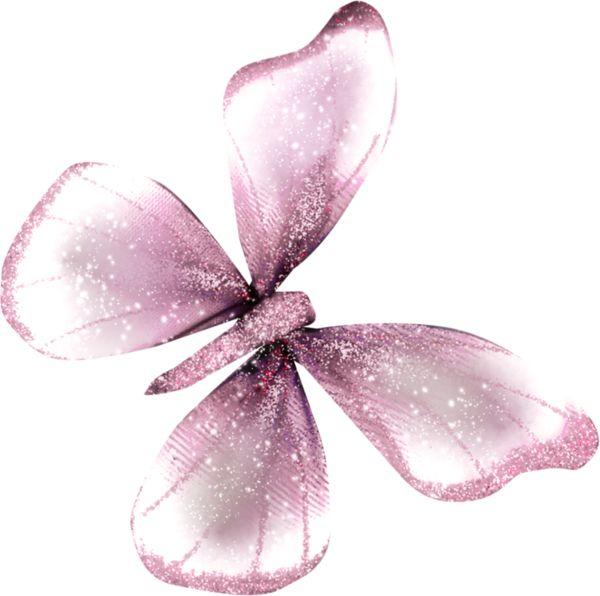 #бабочка#butterflies#