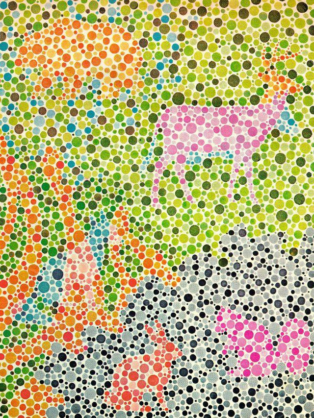 test-daltonismo | Educación | Pinterest | Salud visual, Test visual ...
