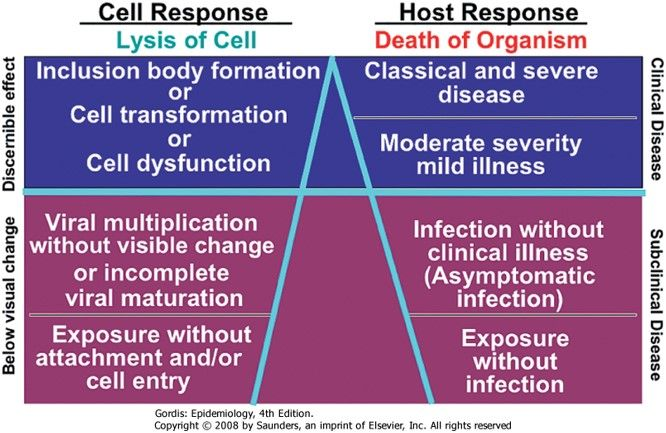 the  - food poisoning duration