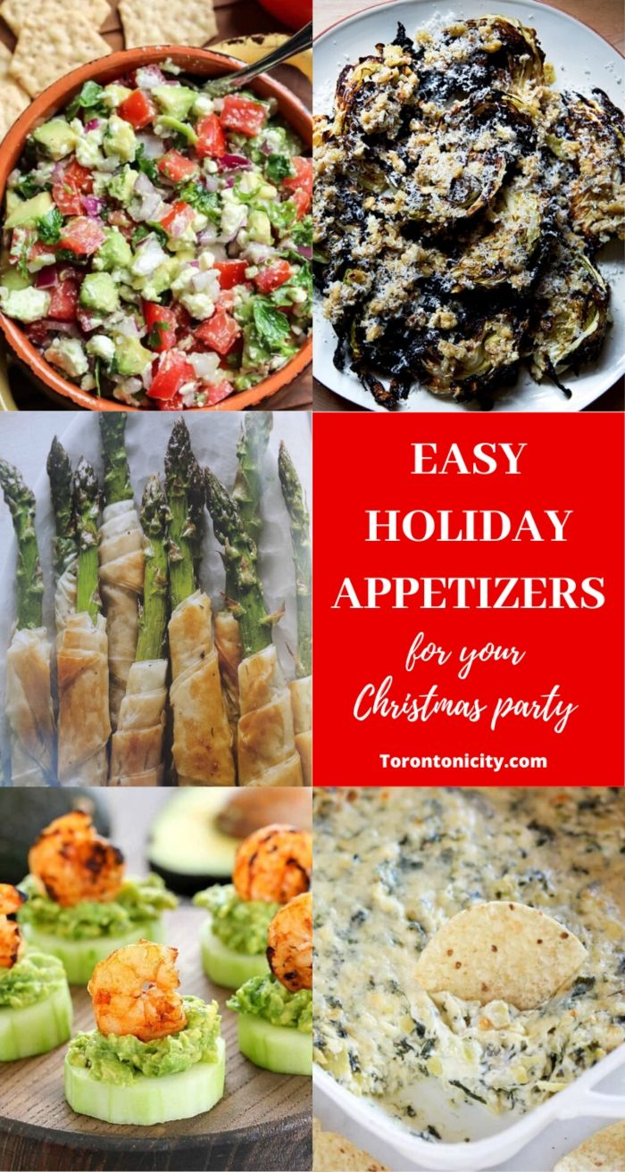 Easy Holiday Appetizers for Your Christmas Party
