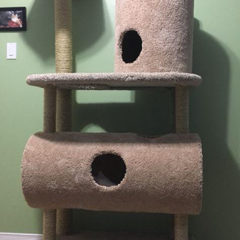 Custom built cat tree I cobbled together. & Custom built cat tree I cobbled together.   Mascotas   Pinterest ...