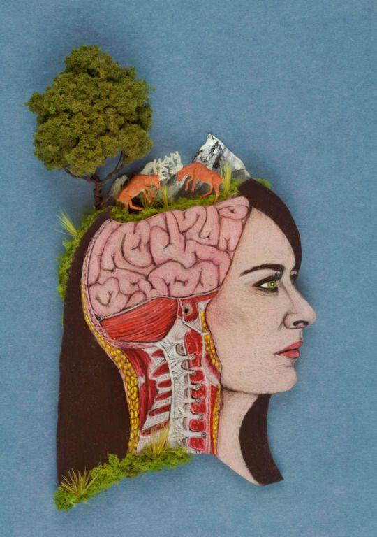 Dream Anatomy by Devon A Urquhart. Etsy Shop