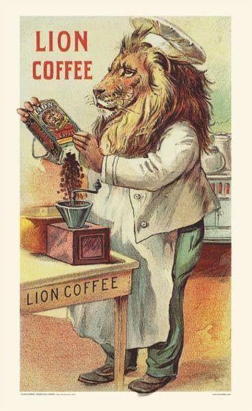 #lion coffee