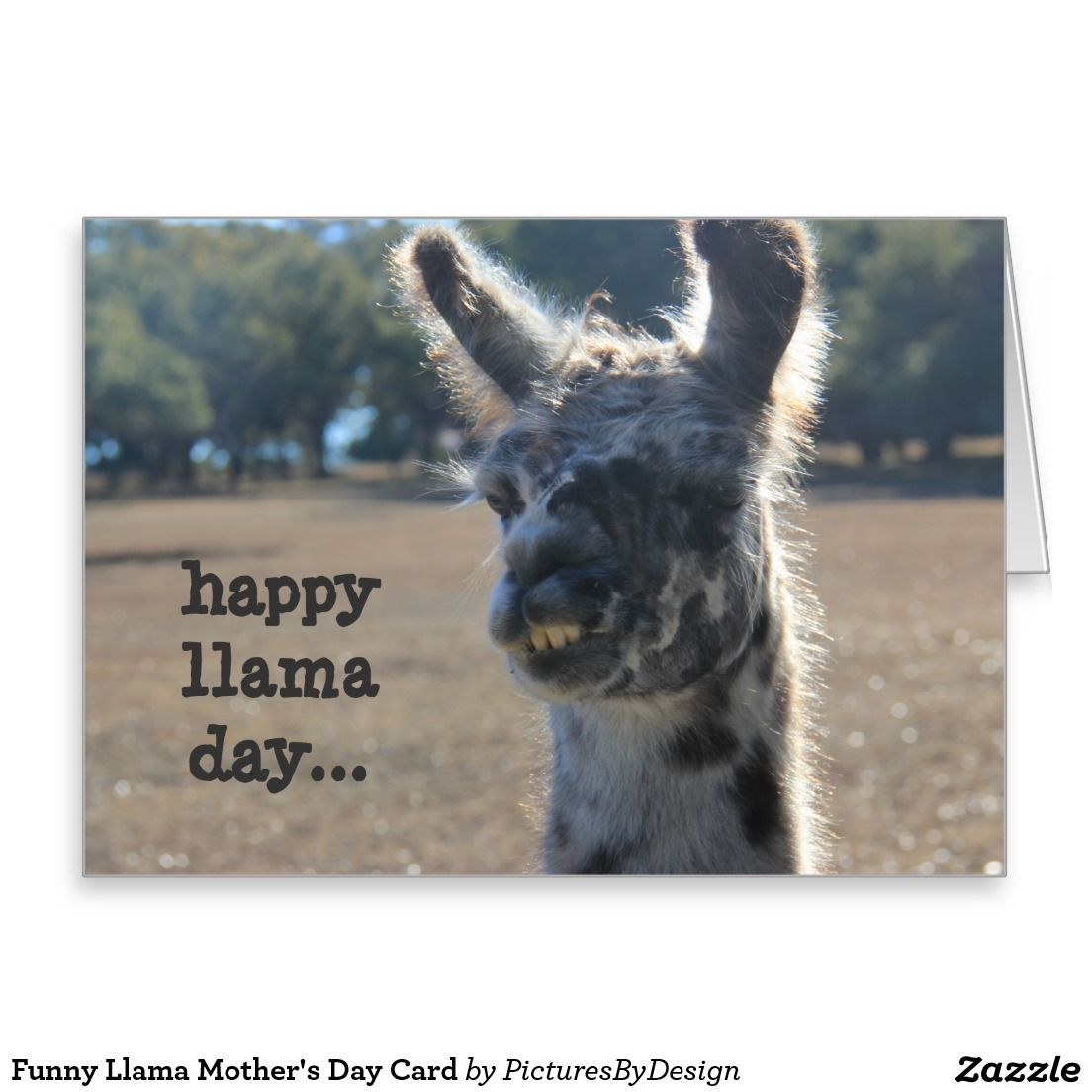 Funny Llama Mothers Day Card front happy llama day inside