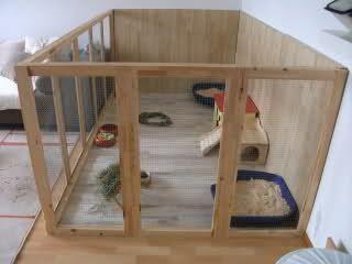 bildergebnis f r hasengehege plexiglas innen pumba. Black Bedroom Furniture Sets. Home Design Ideas