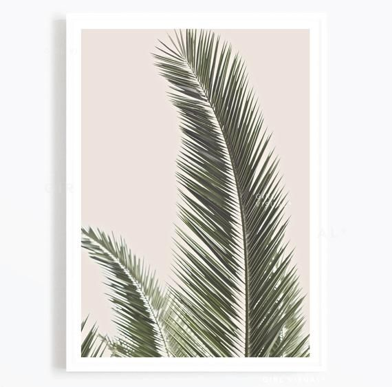 Palm print, Botanical print, Chic print, Palm tree photography print, Photography prints, Fashion prints, Bohemian prints, Bohemian decor
