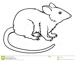 image result for rat clipart black and white animals in the sea rh pinterest com Black and White Cat Clip Art Van Clip Art Black and White