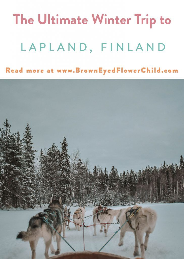 Photo of The Ultimate Winter Adventure in Lapland, Finland – Brown Eyed Flower Child
