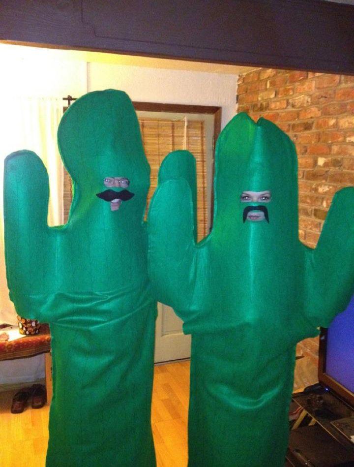 cactus-halloween-costume.jpg (720×949) | Cactus ,suculents and ...
