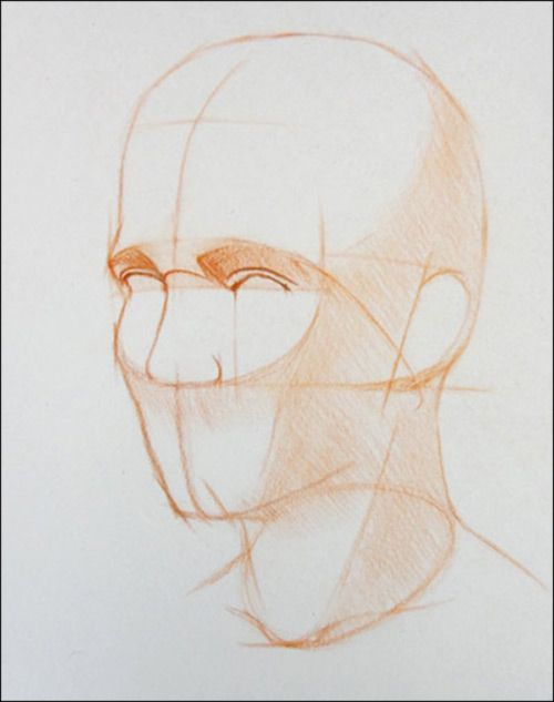 how to draw a portrait 28 noses eyes ears features proportions