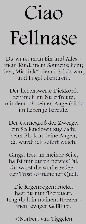 Gedichte Mitten Aus Dem Leben Von Norbert Van Tiggelen Gedichte Und Spruche Gedichte Spruche