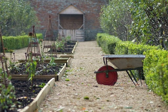 Vegetable Garden Provisionsfarms Raised Beds And Wide Walkways Hedges As Border Beautiful