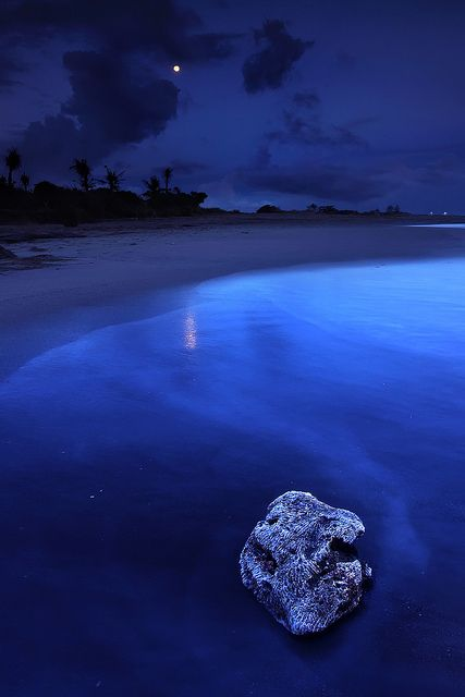 Blue Moon I Want To See A In The Most Beautiful Place