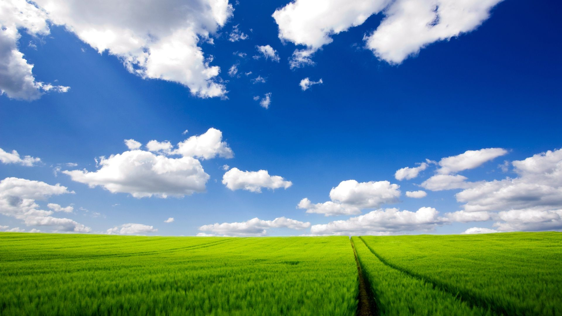 windows xp bliss wallpaper 1920a—1080 windows xp original wallpapers 47 wallpapers