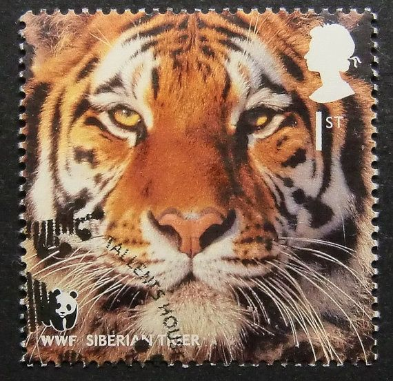 This Siberian Tiger Uk Postage Stamp Art Is Handmade By Our Family In Vancouver Cat Stamp Uk Stamps Small Wild Cats