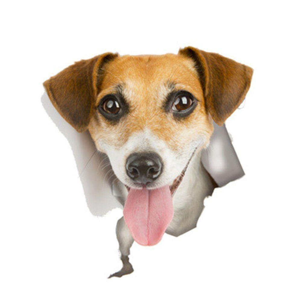 Pin Em Pet Supplies