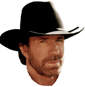 Pin By Maria Aparecida Pachaly On Chuck Norris Chuck Norris Norris Chucks