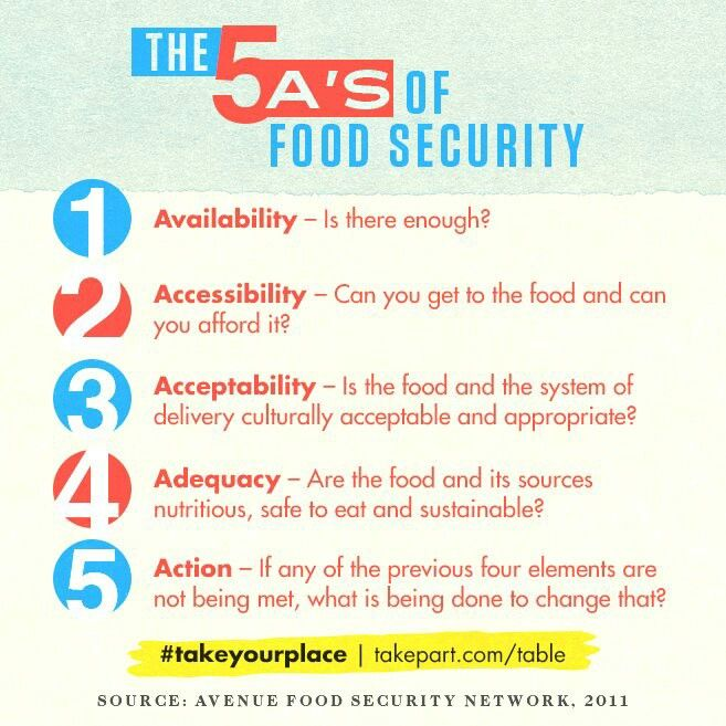 Pin By Tracy Walker On Hunger Game Food Infographic Security Insecurity Essay
