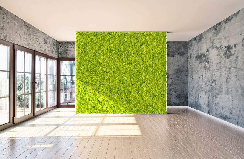 cadre sur mesure en mousse lichen stabilis mousses. Black Bedroom Furniture Sets. Home Design Ideas