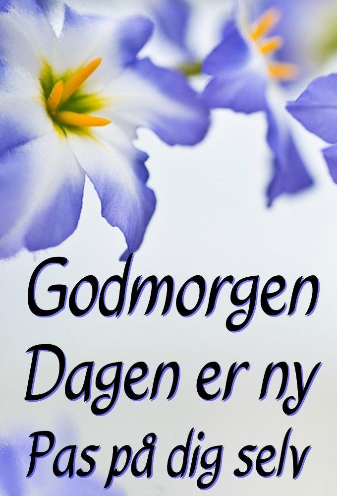 Dagen Er Ny Godmorgen Godmorgen Vennecitater Positive Citater