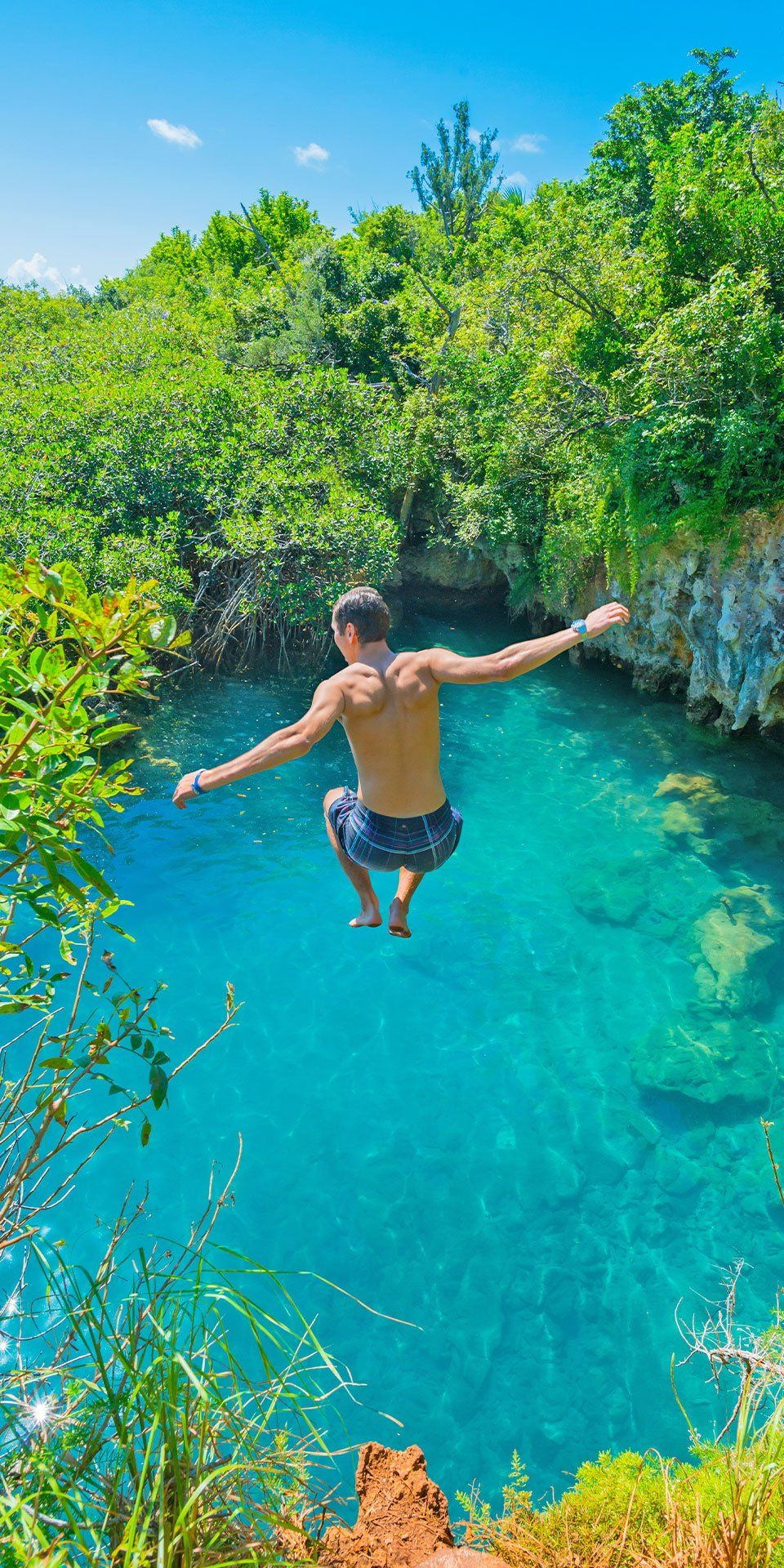 Jump Into Paradise. From Its Pastel