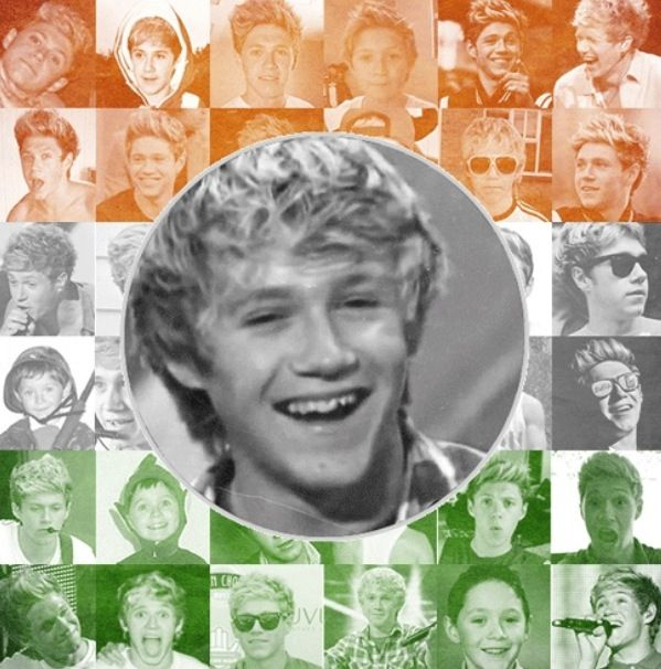 Niall Horan (With Images)