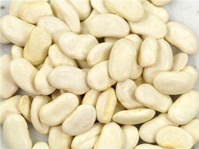 Haricot Tarbais Beans
