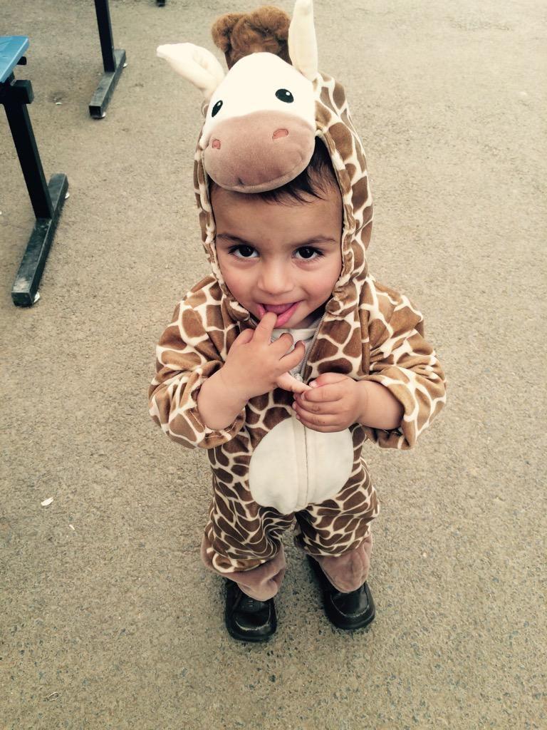 Adorable little giraffe at the UNHCR\'s Lebanon registration center ...
