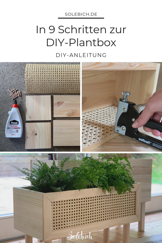 In 9 Schritten zur DIY-Plantbox mit Dekorationswut