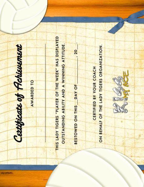 Volleyball Award Certificate Designed By: Roxanne Buchholz 8.5 X 11 Flyer