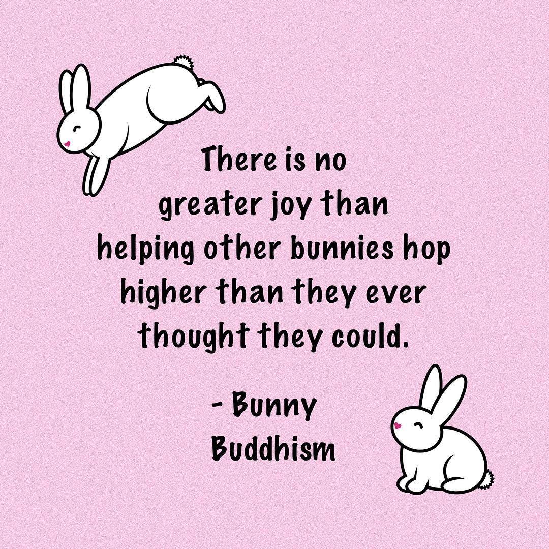 bunnybuddhism #bunniness #bunnygram #bunnylove #bunny ...