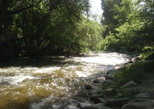 Fishing in Boulder: stores and rivers