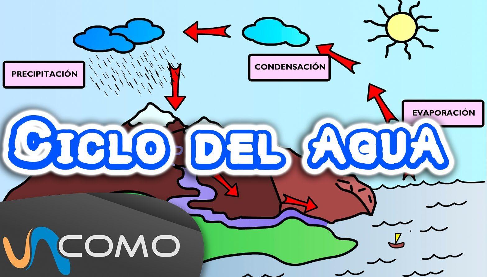 Explicación Del Ciclo Del Agua Para Niños Ciclo Del Agua Ciclo Del Agua Dibujo Ciencias De La Naturaleza