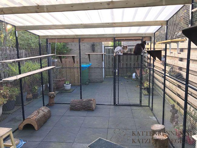 Katzengehege Bauen aluminium kattenren katzengehege zwinger katzenauslauf katzen