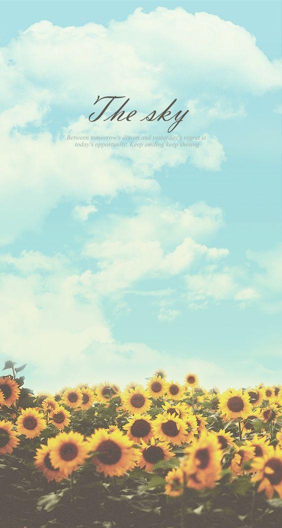 Sunflower Sky Keep Shining Iphone 6 Plus Hd Wallpaper Positive Wallpapers Iphone Wallpaper Phone Wallpaper
