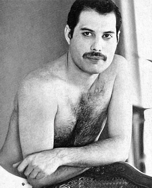 Freddie Mercury Freddie Mercury Bulsara Freddie Mecury