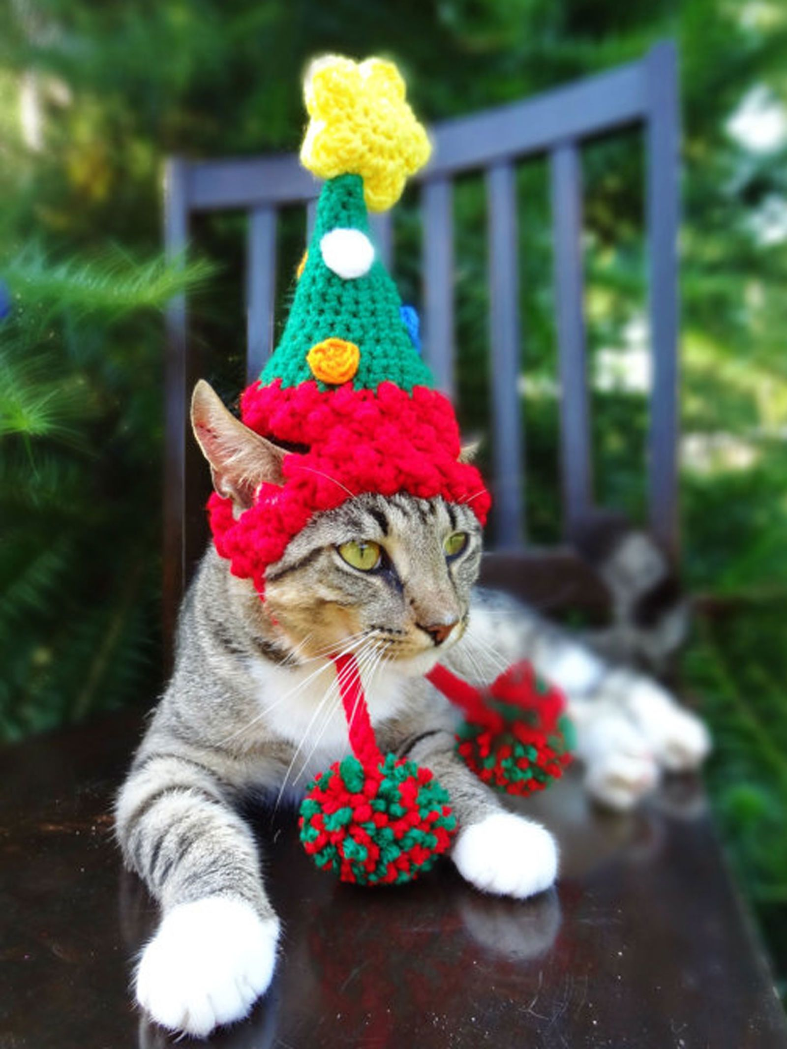 Pet Parade 50 Ridiculously Adorable Animals In Costume Christmas Cats Christmas Dog Costume Pet Parade