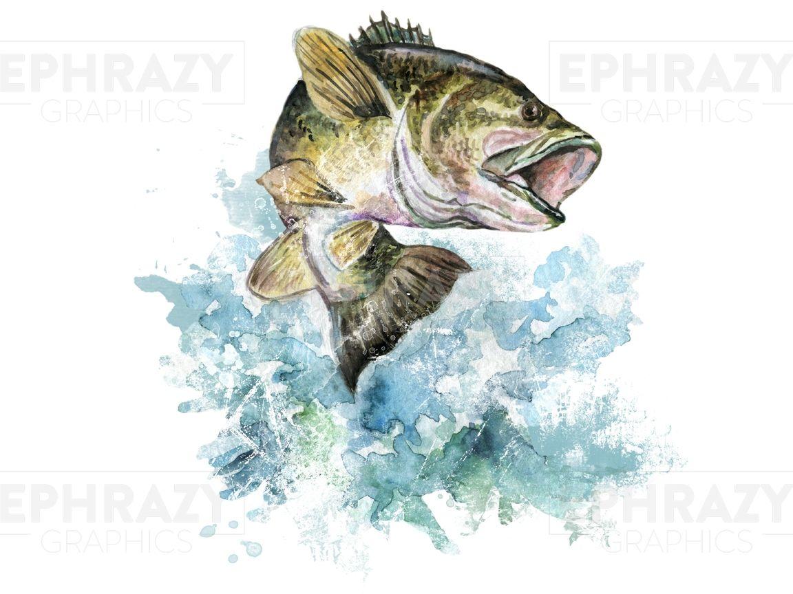 Bass Fish Fishing Fisherman Shirt Digital Watercolor Design Png Digital Watercolor Watercolor Design Fish Clipart