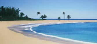 The Cove Beach Bahamas Beaches Atlantis Resort Paradise Island Fanaticssummerwishlist Clevelandbrowns